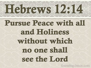 Hebrews 12:14 Pursue Peace And Holiness beige