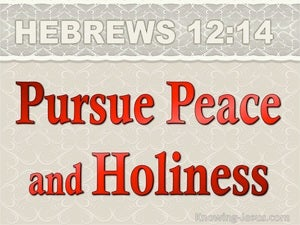 Hebrews 12:14 Pursue Peace And Holiness red