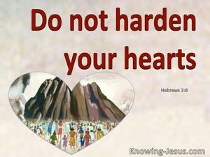 Hebrews 3:8 Do Not Harden Your Hearts As In The Wilderness (red)
