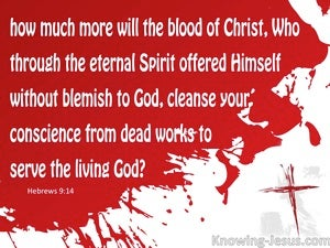 Hebrews 9:14 The Blood of Christ (red)