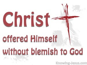 Hebrews 9:14 The Blood of Christ (white)