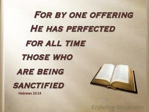 Hebrews 10:14 By One Perfect Offering (brown)