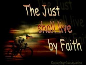 Journey Into Faith  (devotional)  (brown) - Hebrews 10:38