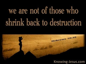 Hebrews 10:39 We Do Not Shrink Back To Destruction (black)