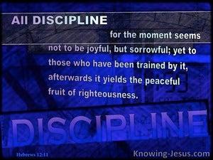 Hebrews 12:11 Discipline May Not Be Joyful (blue)