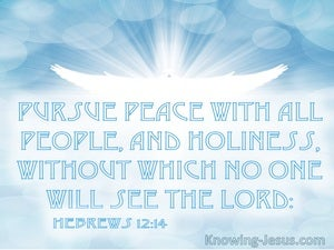 Hebrews 12:14 Pursue Peace With All People and Holiness WIthout Which No One Will See The Lord (white)
