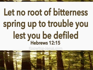 Hebrews 12:15 Let No Root Of Bitterness Spring Up (beige)