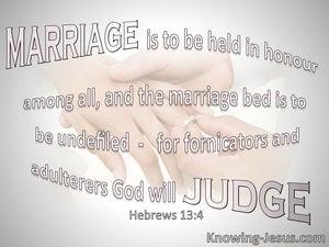 Hebrews 13:4 Marriage Is To Be Held In Honour (pink)