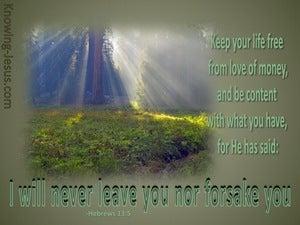 Hebrews 13:5 I Will Not Leave You (sage)