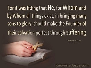 Hebrews 2:10 Captain of Our Salvation (brown)