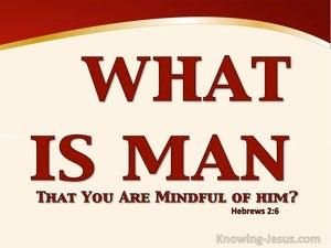 Hebrews 2:6 What Is Man (red)