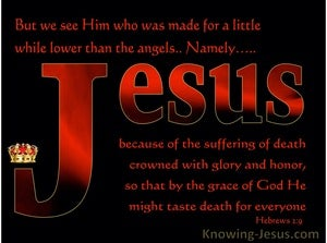 Hebrews 2:9 Jesus Crowned With Glory And Honour (black)
