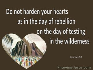 Hebrews 3:8 Do Not Harden Your Hearts As In The Wilderness (brown)