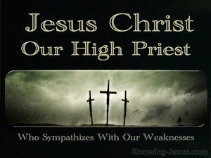 Hebrews 4:15 Our Great High Priest (black)