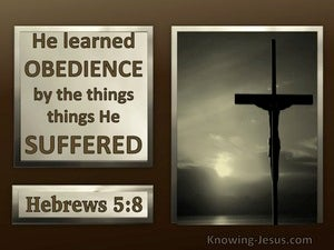 Hebrews 5:8 Jesus Learned Obedience Thru Suffering (brown)