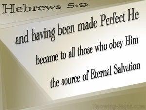 Hebrews 5:9  Christ The Source Of Eternal Salvation (beige)