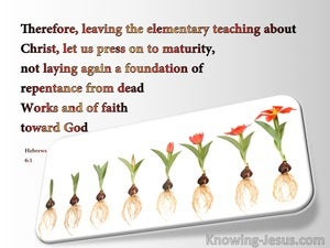 Hebrews 6:1 Leave The Elementary Teachings (white)