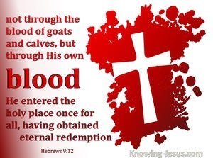 Hebrews 9:12  Through His Own Blood (maroon)
