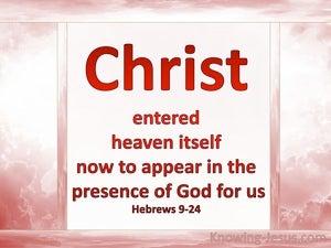 Hebrews 9:24 Christ Entered Heaven (pink)