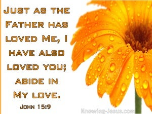 John 15:9  Abide In My Love (orange)