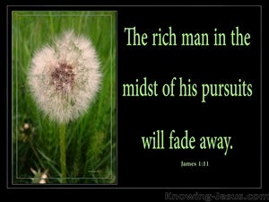 James 1:11 The Rich Man Will Fade Away (green)