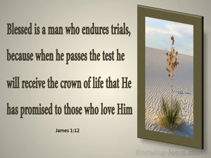 James 1:12 Blessed Is The Man The Endures Trials gray