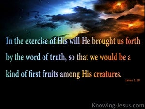 James 1:18 Saved By The  Word Of Truth  (black)