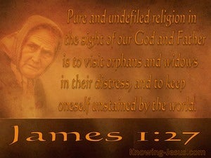 James 1:27 Pure And Undefiled Religion brown