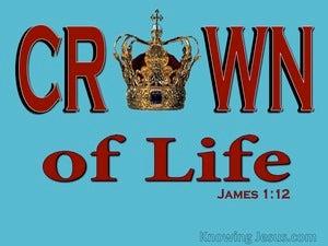 Spiritual Truth (devotional) (red) - James 1:12