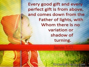 James 1:17 Every Good And Perfect Gift Comes From The Father Of Lights (red)