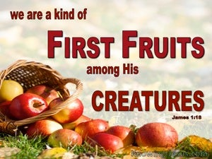James 1:18 First Fruit Of God's Creation (red)