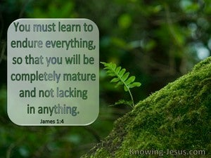 James 1:4 Endure Everything So You Wil Be Completely Mature : Lacking Nothing (windows)03:12