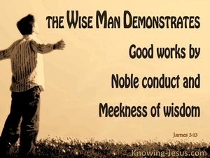 James 3:13 Who Is Wise And Understanding (brown)