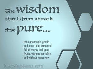 James 3:17 Wisdom From Above (sage)