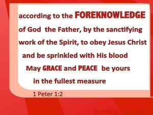 1 Peter 1:2 Elect According To the Foreknowledge of God red