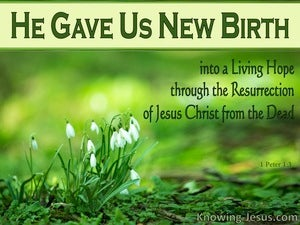 1 Peter 1:3  He Gave Us New Birth green