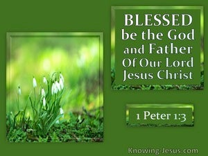 1 Peter 1:3  He Gave Us New Birth white