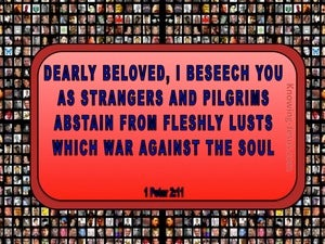 1 Peter 2:11 Abstain From Fleshly Lusts red