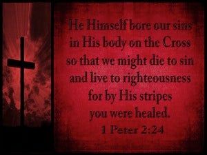 1 Peter 2:24 He Bore Our Sins black