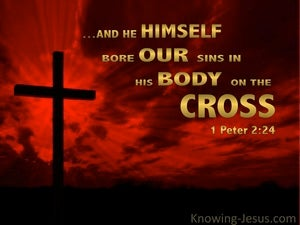 1 Peter 2:24 He Bore Our Sins red