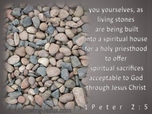 1 Peter 2:5 A Spiritual House (brown)
