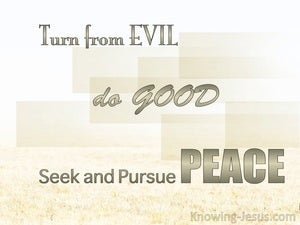 1 Peter 3:11 Turn From Evil And Do Good beige