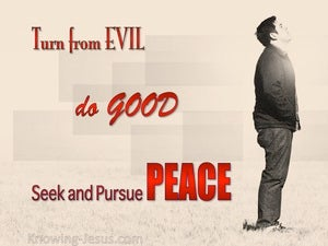 1 Peter 3:11 Turn From Evil And Do Good red