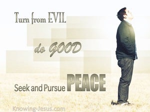 1 Peter 3:11 Turn From Evil And Do Good sage