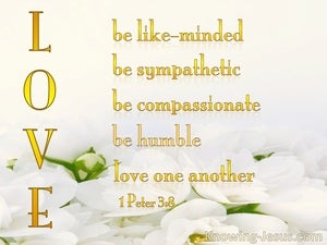 1 Peter 3:8  LOVE   :   Be Like Minded yellow