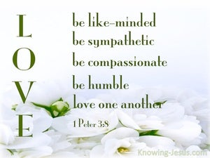 1 Peter 3:8 Be Tender, Humble And Love green