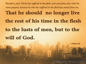 1 Peter 4:2 Live By The Will Of God orange
