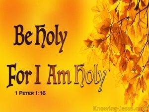 1 Peter 1:16 Be Holy For I Am Holy (orange)