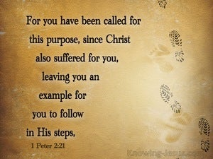1 Peter 2:21 You Have Been Called For This Purpose (brown)