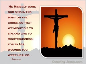 1 Peter 2:24 Who His Own Self Bare Our Sins In His Own Body On The Tree (orange)